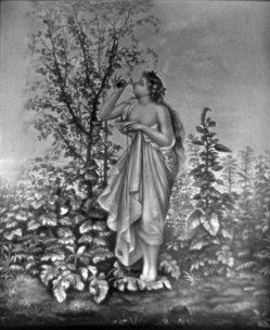 (PPM) 1408 – Der Blüten Duft