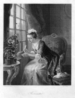 William French (1815-1898), Antoinette, Stahlstich nach de Bruycker, D1517